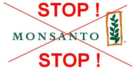 Petition_STOP_MONSANTO.jpg